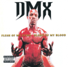 Slippin - DMX mp3