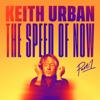 One Too Many - Keith Urban & P!nk mp3