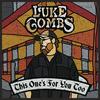 Beautiful Crazy - Luke Combs mp3