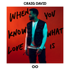 When You Know What Love Is - Craig David mp3