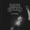 Beer Never Broke My Heart - Luke Combs mp3