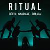 Ritual - Tiësto, Jonas Blue & Rita Ora mp3